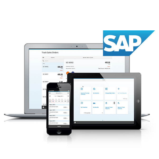 SAP Mobile Application